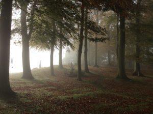 Quan Yin in mist